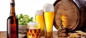 Hiểu biết chung về Bia